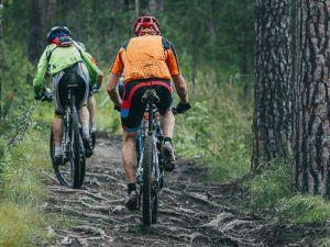 mountainbike huren Utrechtse Heuvelrug